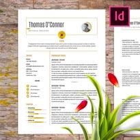 FREE Modern Resume Template