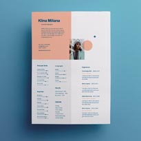 Split Style Resume Template