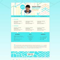 6 Style Resume Template