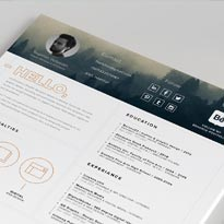 FREE Resume Template + Icons - Self Promotion