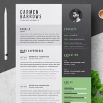 Free Professional Resume / CV Template
