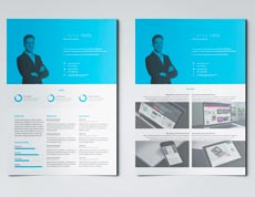Professional Resume Template for Adobe InDesign