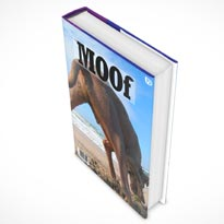 book mockup psd 07