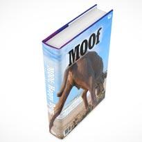 book mockup psd 08