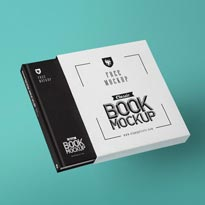 Free Beautiful Bookcase Mockup