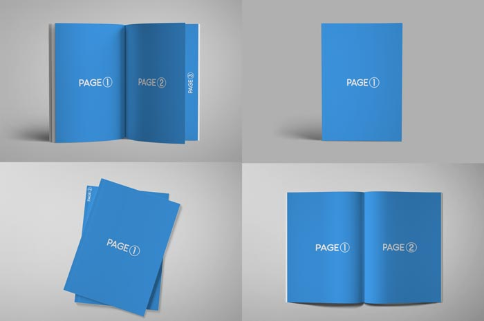 Set of Book Mockups