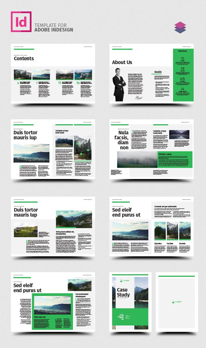 Case study template stockindesign for Adobe indesign magazine templates free download